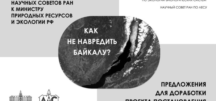 Обращение к Министру природных ресурсов и экологии РФ